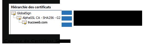 Exemple de chaine de confiance SSL (SHA-2)